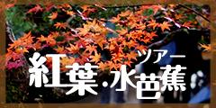 紅葉・水芭蕉ツアー